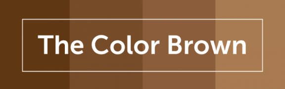 Color Psychology of Brown